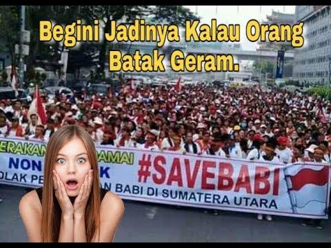 demo-'save-babi'-dihadiri-jutaan-orang-batak-indonesia.-|-depan-kantor-dprd-medan