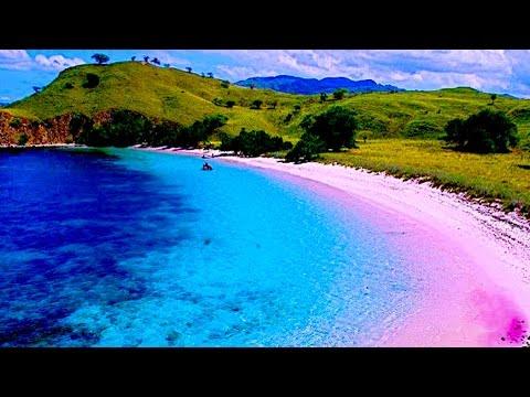 A PINK BEACH | Browney
