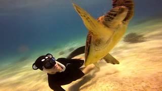 2018 Bohol Freediving