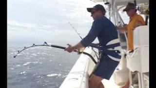 Yellowfin Tuna | Gulf of Mexico | Solo
