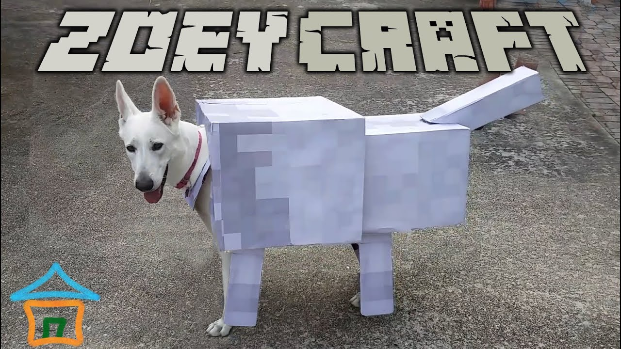 ZoeyCraft Real Life Minecraft Wolf :) - Minecraft Dog ...