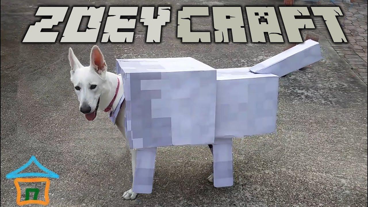 ZoeyCraft Real Life Minecraft Wolf :)