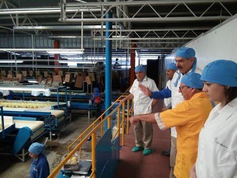 Incursión del Melón Hondureño en Mercado Japonés
