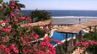 Nesima Resort 2* Дахаб, Египет(Отель Nesima Resort 2* Дахаб, Египет Курортный отель Nesima располагает открытым бассейном с солнечной террасой..., 2015-08-17T17:53:32.000Z)