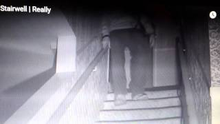 Most Haunted Live 2015 - 30 East Drive - Karl Pulled - Faked?
