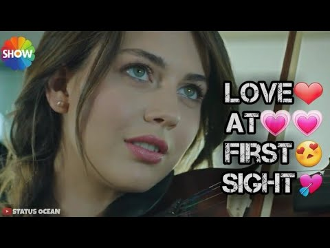 Download Love At First Sight Status | Boys Attitude Status | Beard Boy Status | Girls Attitude Status