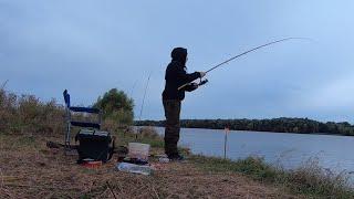 Рыбалка осенью на Оке Ловля на донки и фидер Сентябрь 2021