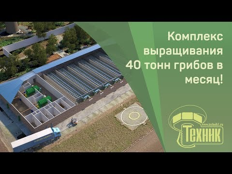 Гидролизный завод-производство спирта этилового