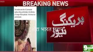 PAK MEDIA ON INDIA LATEST   Pak media on Kulbhushan Yadav family meet with him ।। Pak media on India