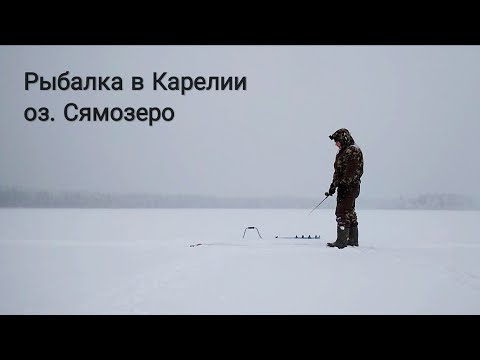 Зимняя рыбалка в Карелии. Озеро Сямозеро