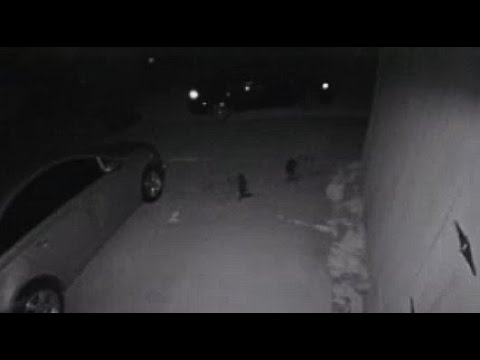 Paranormal Activity Captured At A Home In Wisconsin & Two Small Dark Humanoid Creatures In Texas.