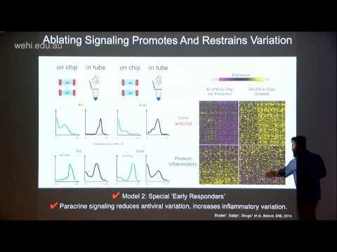 Shalek A (2015): using single-cell transcriptomics to explore cellular identity and behaviours
