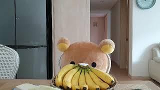 (rilakkuma) 리락쿠마와 함께하는 건강한 식단^…