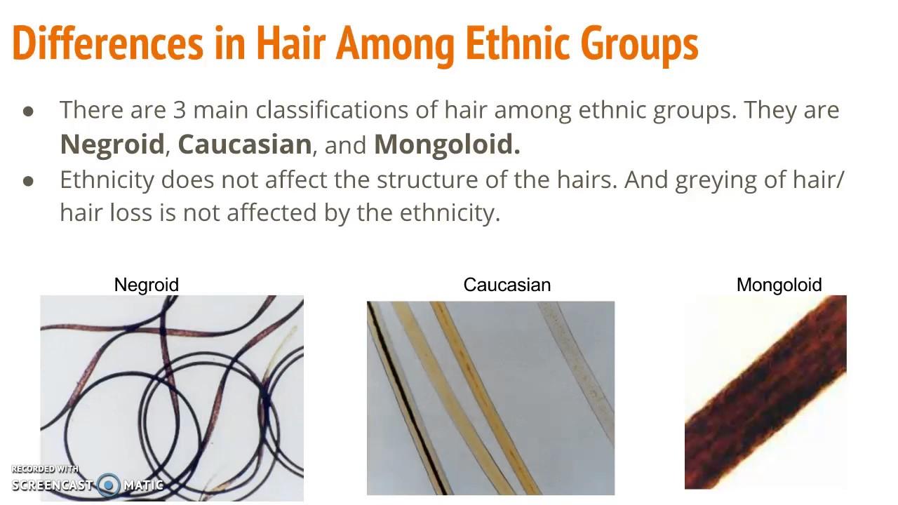 Hair In Forensics Youtube