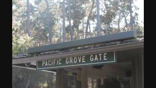 17 Mile Road 001 - 102306 - California Trip 2006