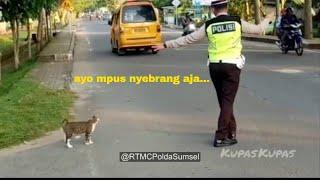 VIDEO VIRAL!!! Kucing minta diseberangkan P0lisi! Begini R34ksi Pak P0lisi
