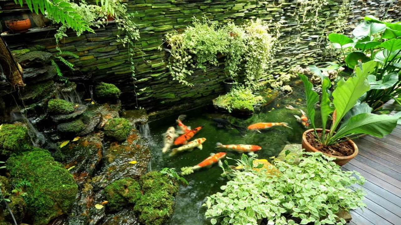 Oriental Garden Design Plants Youtube