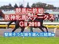 【競馬に挑戦】阪神牝馬ステークス GⅡ 2018