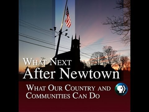 What Next After Newtown: What our Country and Communities Can Do