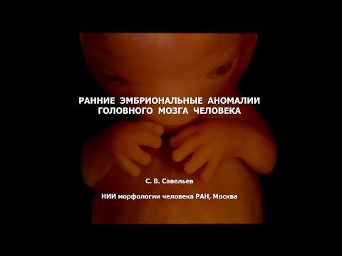 Издательство Человек, г. Санкт-Петербург