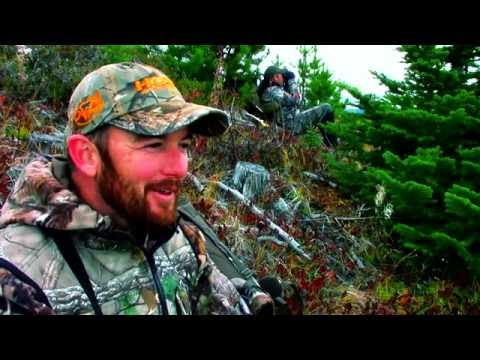 Alberta Archery Moose Hunt - Grizzly Charge