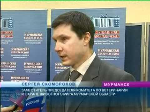 Источники муниципального права РФ Правовой статус
