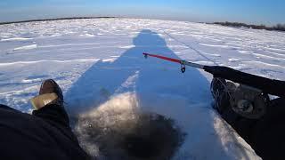 Первая зимняя рыбалка 2019 Хорёк однако