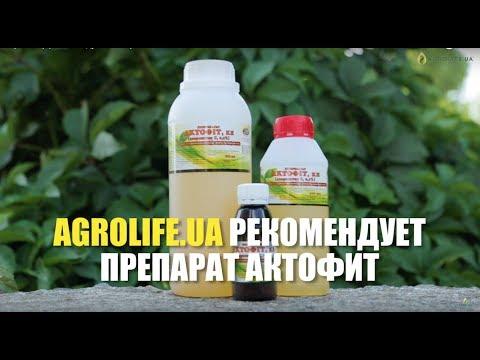 Биопрепарат против вредителей Актофит | Agrolife.ua рекомендует