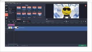 Movavi Video Suite 18 demo video