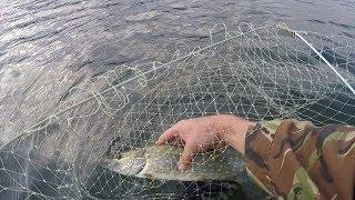 крым рыбалка озеро гасфорт, с кружками за щукой