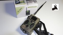 HC300M trail camera MMS setup and sample footage - Fotopułapka HC300M