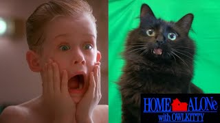 Home Alone with my Cat (Behind the Scenes)