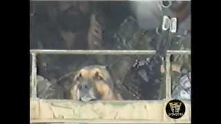 Чечня, Гудермес 1995г. Вологодский ОМОН - 8 часть