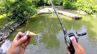 Searching for BIG BASS in Scorching Heat!! (Crankbait Fishing)
