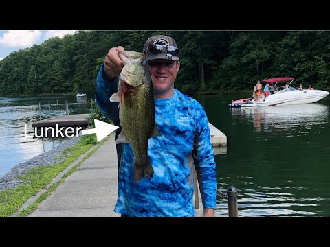2019 FLW PA Bass Federation District IV Tournament #2 At Raystown (Won Lunker)
