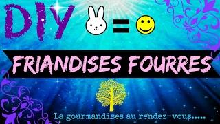 💜🐹[DIY] Friandises Fourrées!🐹💜