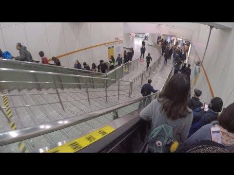 上海地铁早高峰Shanghai metro rush hour
