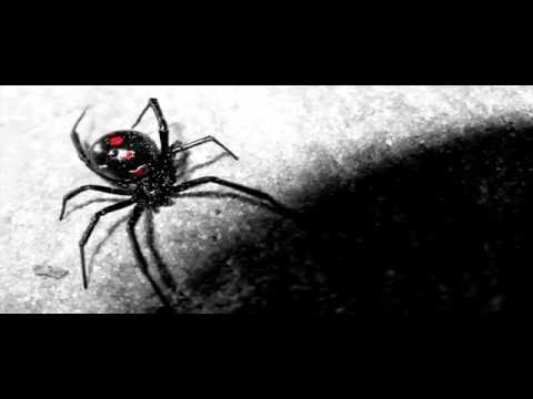 Nightcore - Black Widow (Cover. Fame on fire feat. Twiggy)