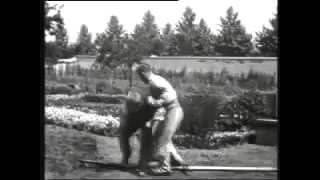 L'arroseur arrosé (The Sprinkler Sprinkled) Film 1895