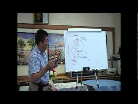 Bài Học Châm Cứu và Mạch Lý - Bài 4e