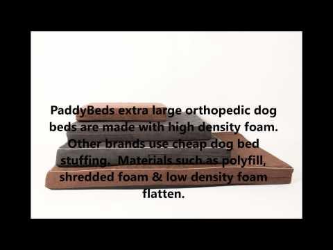 dog-beds-for-abruzzese-mastiff