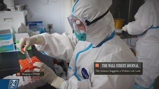 Новое доказательство лабораторного происхождения коронавируса Между строк
