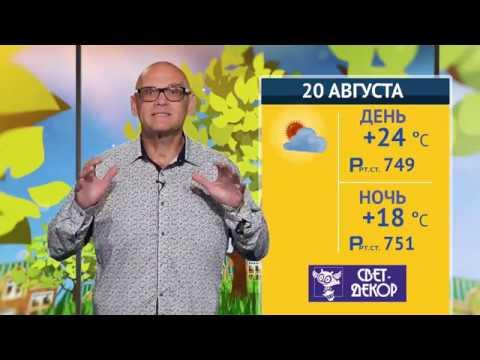 Хорошая погода, 20 августа 2019