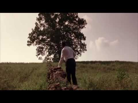 The Lie Tree Trailer - ENG 3560