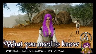 ArcheAge Unchained - What you need to know while leveling