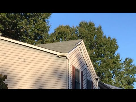 Roof repair or roof replacement in Woodbridge VA: DIY roof repair - SIKE