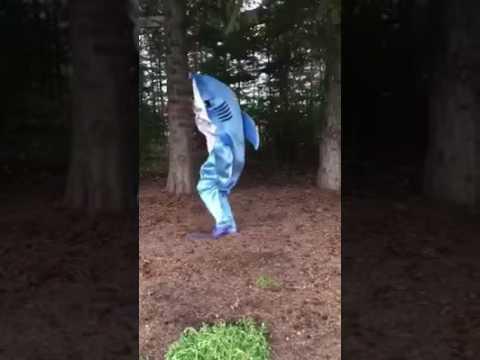 Shark-ira Part II