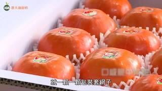 IGO果-摩天嶺甜柿