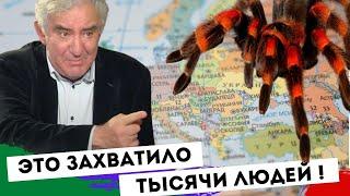 Сделайте свой выбор Михаил Казиник
