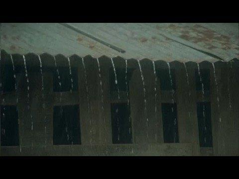 THE BETRAYAL trailer